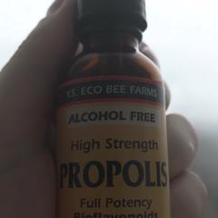 Y S  Eco Bee Farms, Propolis, High Strength, Alcohol Free, 1