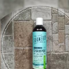 The Seaweed Bath Co Hydrating Balancing Shampoo Eucalyptus Peppermint 12 Fl Oz 354 Ml Iherb